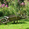 brouette-jardin